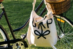 United-Places-tote-bicycle